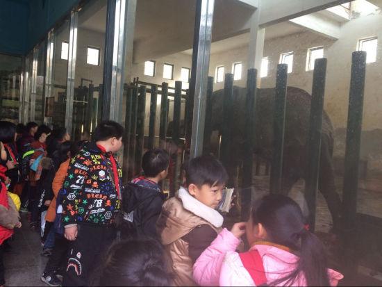 图为学生动物园里游园