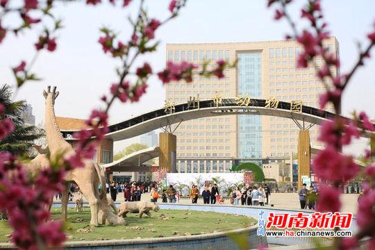 游人纷纷涌入动物园赏花 图片郑州市动物园供图